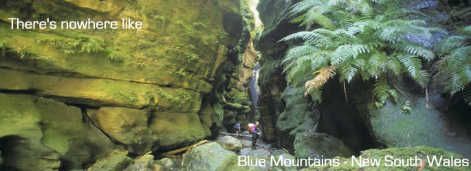 Come and holiday in Blue Mountains NSW