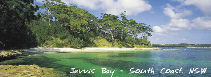 Visit NSW for great holiday experiences and events