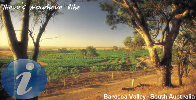 Barossa Valley - South Australia