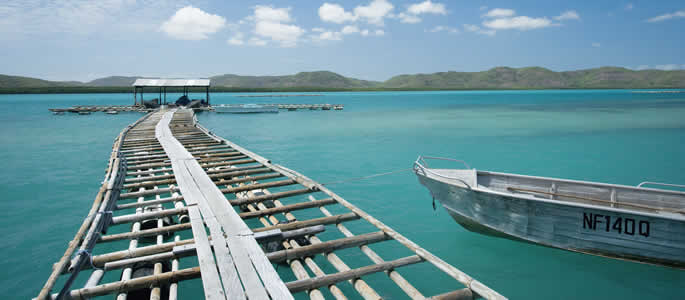 Torres Strait Islanders Australia Torres Strait Islands Qld